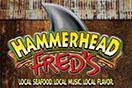 Hammerhead Freds